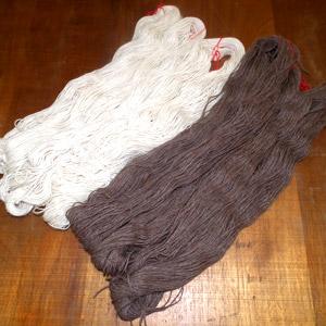 protège pelote laine